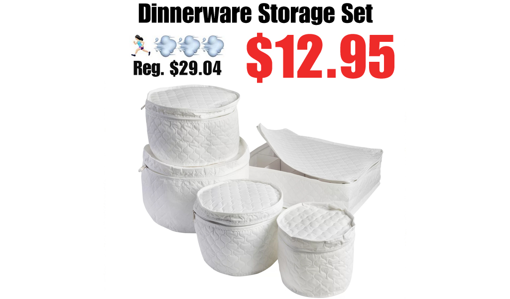 Dinnerware Storage Set Only $12.95 on Wayfair (Regularly $29.04)