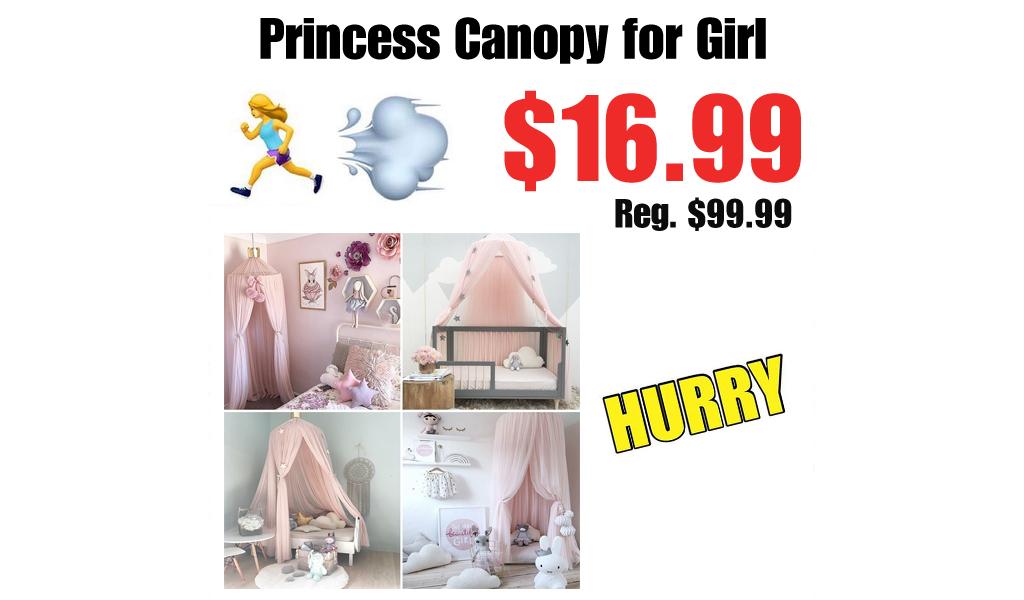 Princess Canopy for Girl Just $16.99 on Walmart.com (Regularly $99.99)