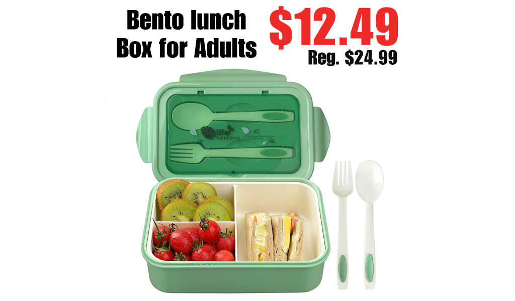 Bento lunch Box for Adults Only $12.49 Shipped on Amazon (Regularly $24.99)
