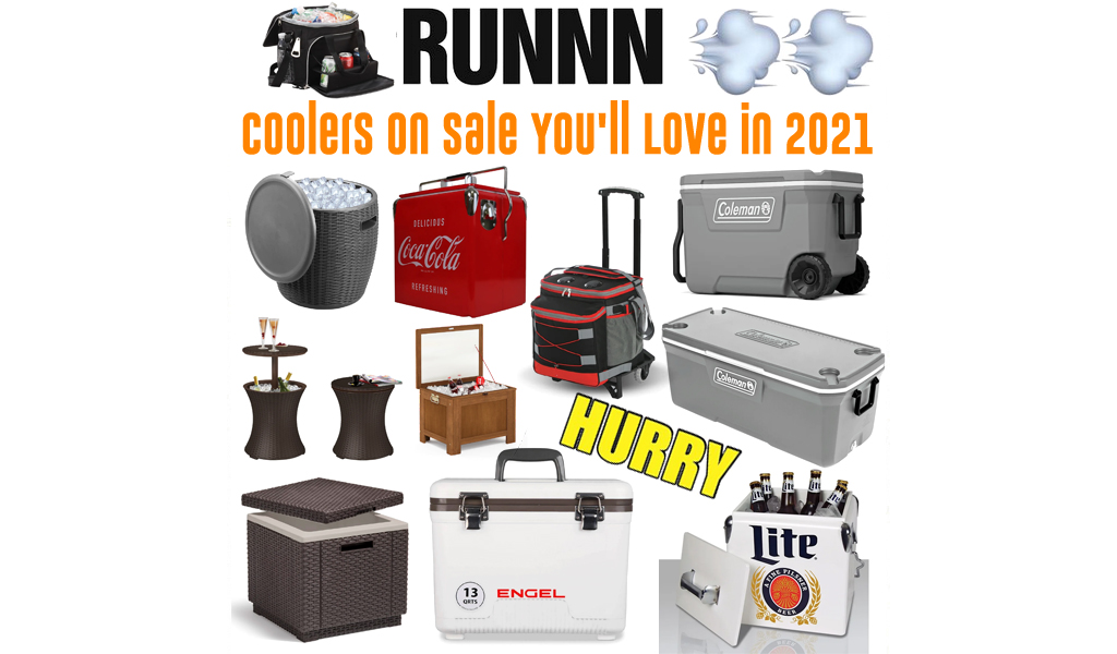 Coolers for Less on Wayfair - Big Sale